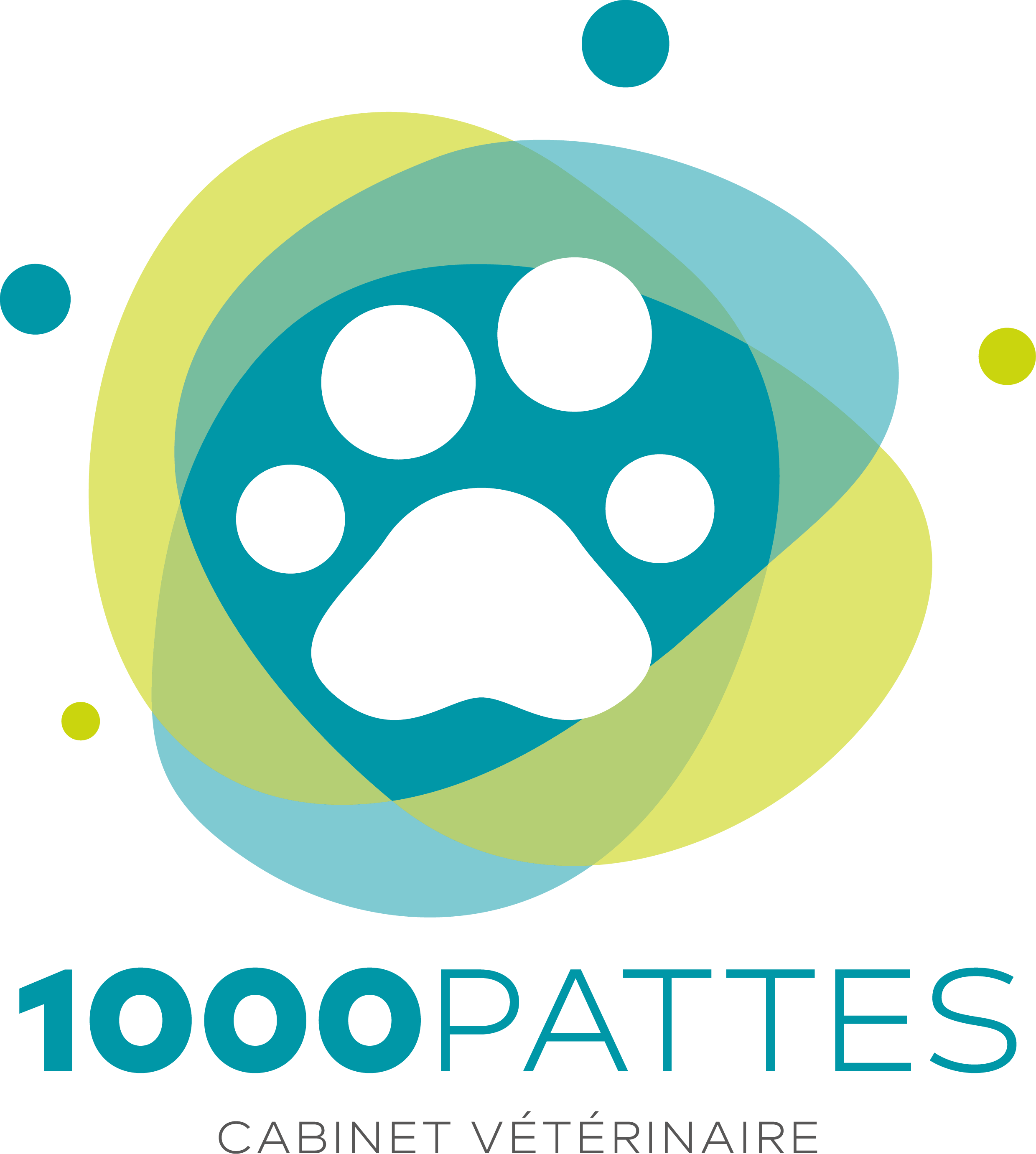 logo veterinaire la turbie
